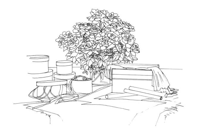室内手绘设计技法教程:花艺与室内绿植的步骤